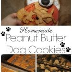 Homemade Peanut Butter Dog Cookies