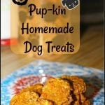 Purina Pro Plan Leash On Challenge and Cheesy Pup-kin Homemade Dog Treats