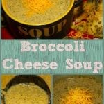 Broccoli Cheese Soup and Borden Dairy's Mooo-dy Summer Mania!