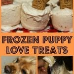Frozen Puppy Love Treats | Pet Parents site by K9 Advantix II