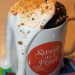 Chocolate Fudge S'mores Mug Cake