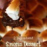 2 Ingredient S'mores Dessert Dip