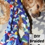 Positive Changes with Purina Pro Plan #BrightMind and DIY Braided Dog Toy