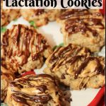 Chocolate Peanut Butter Lactation Cookies