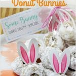 Mini Carrot Cake Donut Bunnies