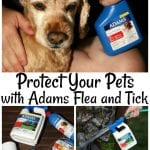 Adams Flea and Tick | Blueberry Banana Frozen Yogurt Dog Treats
