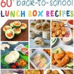 60+ Back to School Lunch Box Recipe Ideas