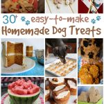 30+ Easy To Make Homemade Dog Treats