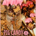 Pig Candy- Chocolate Covered Bacon Skewers