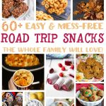 60+ Easy and Mess Free Road Trip Snacks
